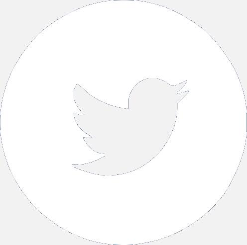 Botón Twitter.